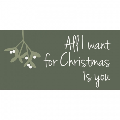 Magnet, all i want for christmas is you